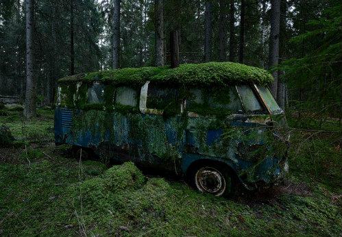 VW KombieVan lost in Forest. | Old Guv Legends